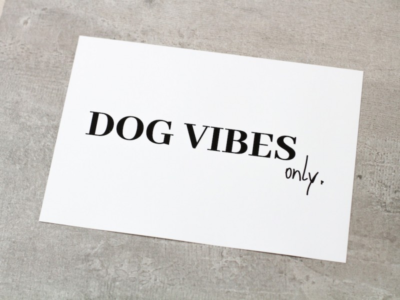Poster *DOG VIBES ONLY*